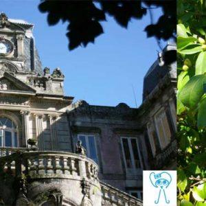 Pazo de Lourizán: jardines, esculturas y encanto en Pontevedra